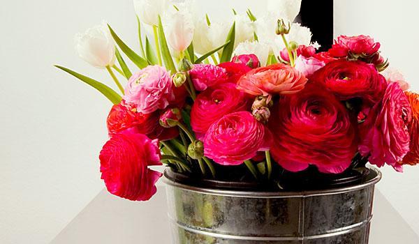 blumen und pflanzen schneider floristik in pfronten blumen pflanzen. Black Bedroom Furniture Sets. Home Design Ideas