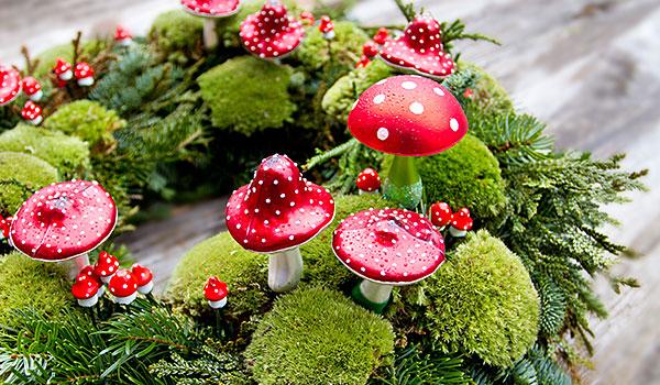 Blumen und pflanzen schneider floristik in pfronten kontakt Schneider dekoration